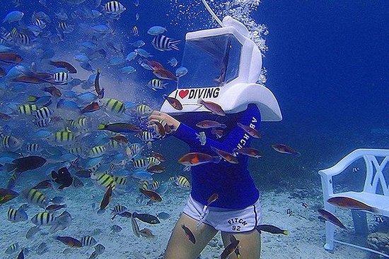 Cebu Seawalker Experience