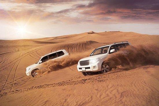 Qatar Desert Safari Expirence.