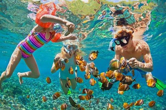 Nusa Penida Manta Snorkeling Tour