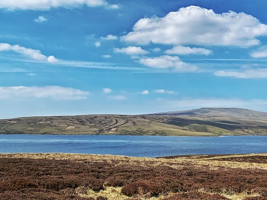 Cow Green Reservoir