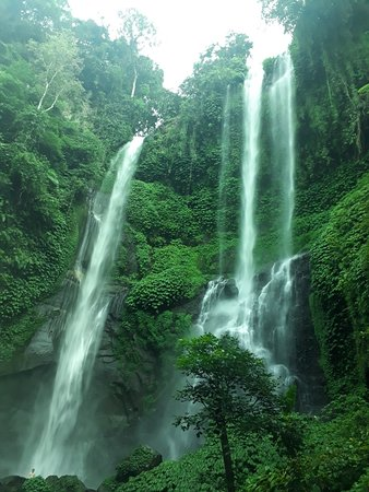 Sekumpul trekking(hidden waterfall)
