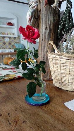 Montecorto, Espagne : Nada más llegar, me recibieron con una rosa, de corazón...