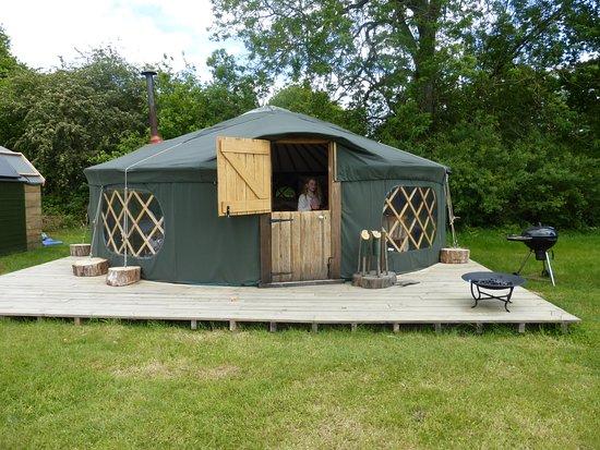 Fernhurst, UK: Chestnut Yurt