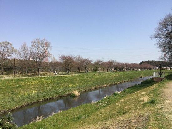 Daihorikawa Riverside Park