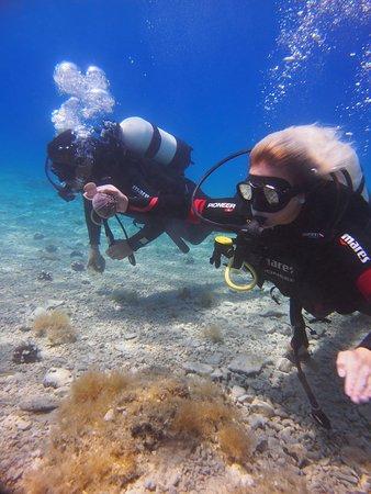 Bikini Dive Home reef Try Scuba