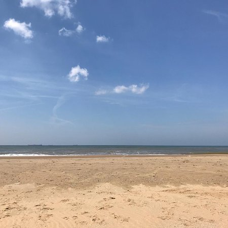 Beach Wassenaarseslag