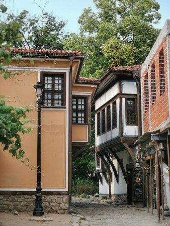 بلوفديف صورة فوتوغرافية