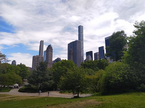 Central Park: View from the park
