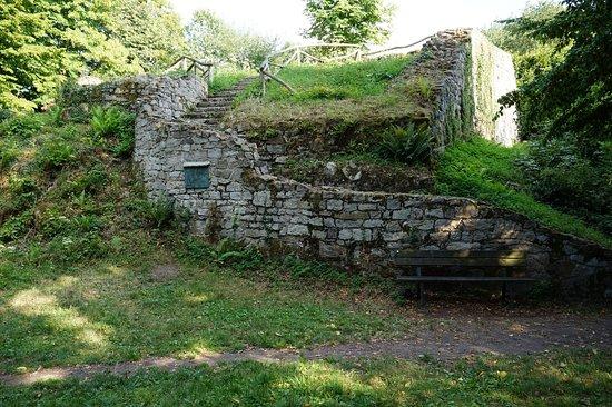 Rosenau, Reste einer mittelalterlichen Wohnanlage im Siebengebirge zwischen Ölberg und Petersberg.