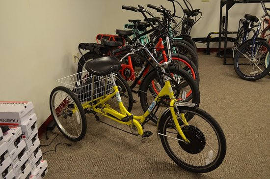Our selection of electric Pedigo bikes, and our Sun Trikes!
