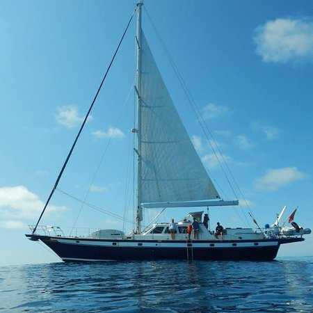 Phoenix - Lisbon Sailing with Style