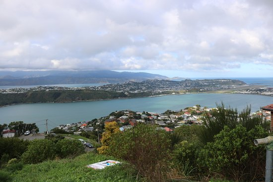 Wellington Hop-on Hop-off bustour: View from Mt Victoria