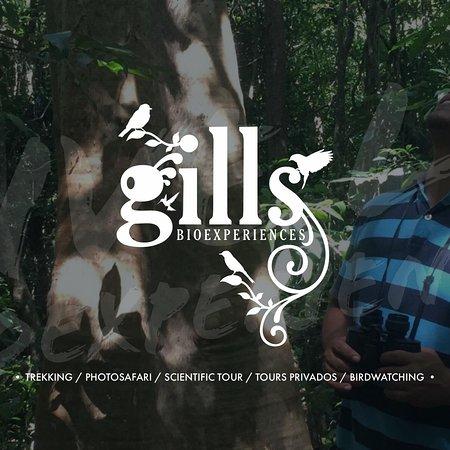 Gills Bioexperiences
