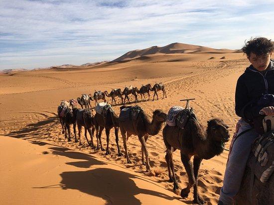Una Experiencia Para La Memoria Opiniones De Viajeros Sobre Merzouga Desierto Tripadvisor