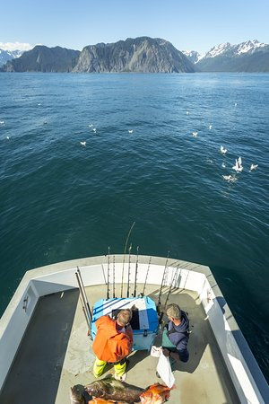 Catch a salmon, rockfish, or cod for dinner off the large fishing deck