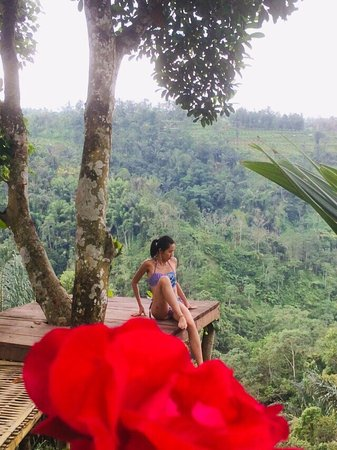 Nungnung, Indonézia: a comfortable place to relax, to enjoy a cup of coffee and tea, as well as to fly over the forest by playing swings