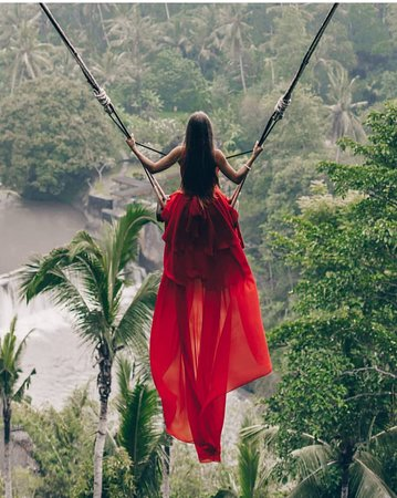 Bali Swing Ubud 2020 All You Need To Know Before You Go