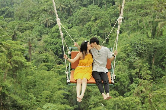 Image result for aloha swing ubud bali