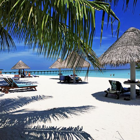 Water Bungalows Brilliant But Review Of Sun Island Resort