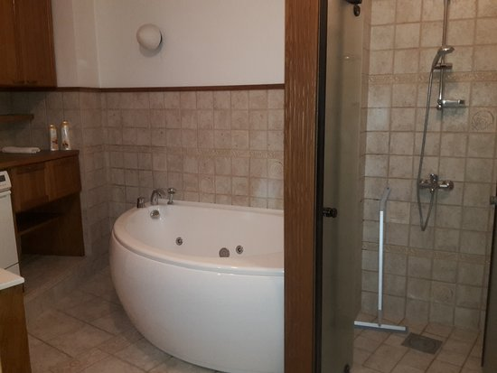 Tallinn City Apartments: Jacuzzi bath and shower. Washing machine to left .Spacious. Opens to Sauna on right.