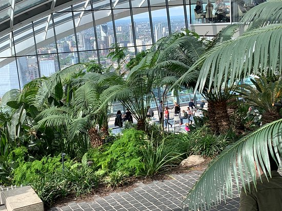 Sky Garden: Looking down from the garden steps to the Sky Pod cafe