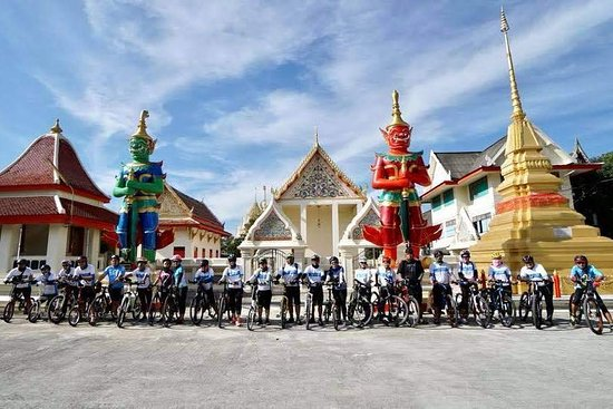 Octo Cycling Tours