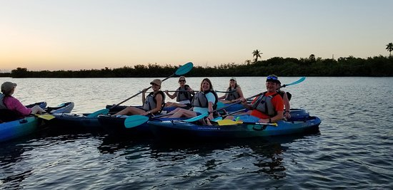 Kayak through the Thousand Islands of Cocoa Beach, Florida! Manatees, Dolphins, Floridian Birds, Mangrove Tunnels, Bioluminescence, Comb Jelly's and MORE! Book today at www.cocoakayaking.com and/or call 808.798.6630!