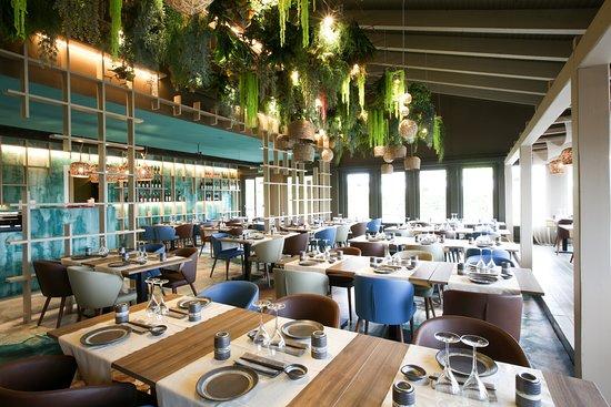 Sakura Fusion Viareggio Menu Prices Restaurant Reviews