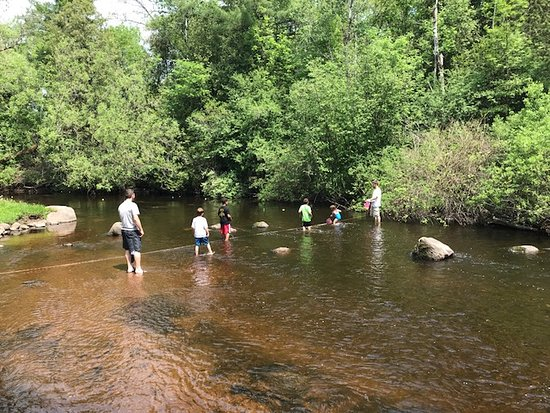 TILLEDA FALLS CAMPGROUND - Updated 2019 Reviews (WI