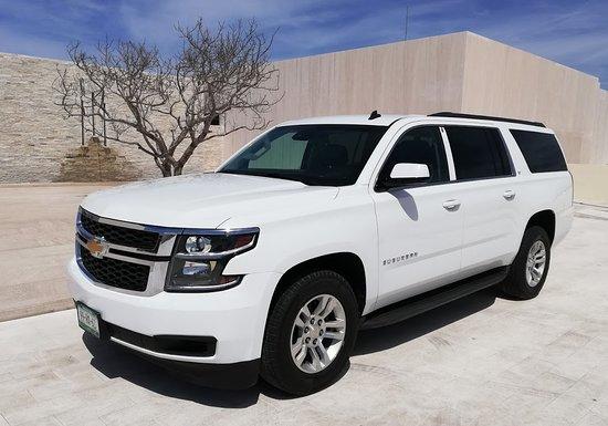 Go Cabo Transportation Services