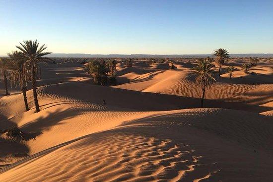Mélodie du désert