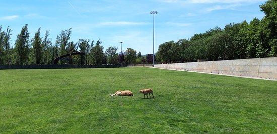 Parc de la Mariona