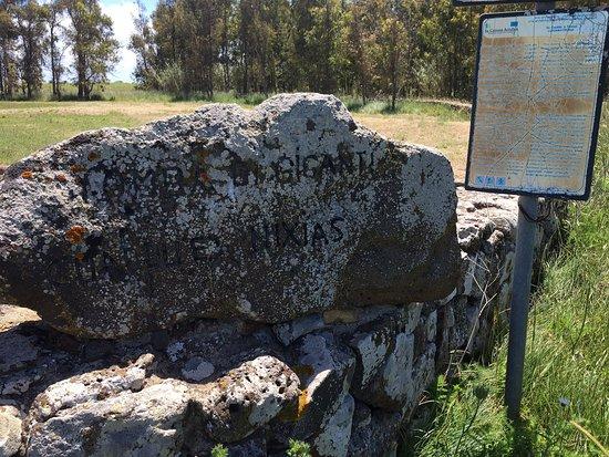 Lunamatrona, Italia: Tomba dei giganti su cuaddu 'e nixias