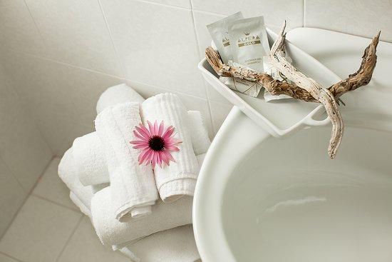 Scoiattolo: particolare bagno