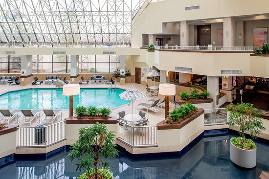 Crowne Plaza St Louis Airport: Need to cool off this summer, take a dip!!