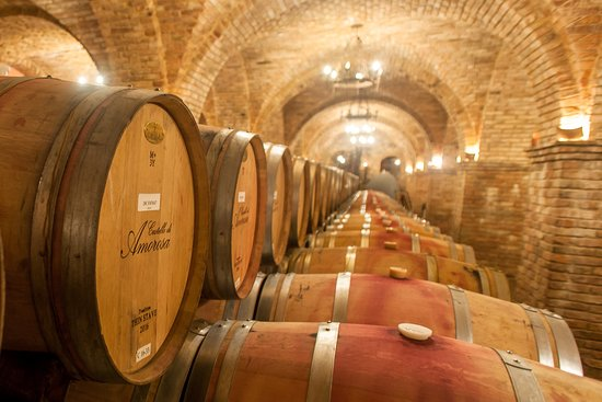 Castello di Amorosa: The Grand Barrel Room is 12,000 sq ft of beautiful antique brick cross vault arches. Can be seen on our Guided Tour options.