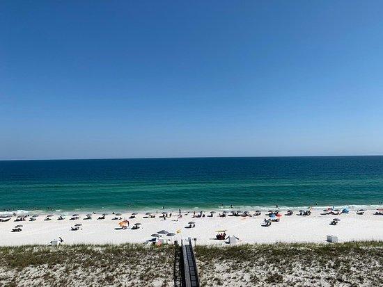 Lazy Days Beach Service 사진