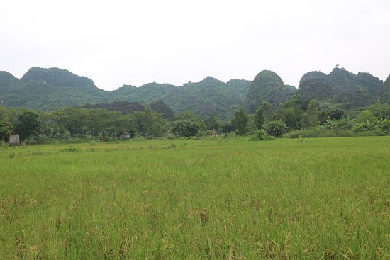 Luxury Ninh Binh - Small Group Only 7 People: ninh binh landscape