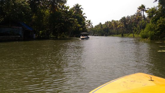 Devgad, อินเดีย: Boating through lush greenary