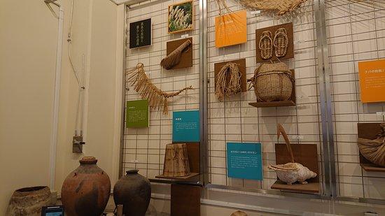 黒島ビジターセンターの展示物