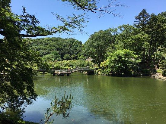 Yakushiike Park