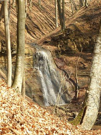 Treznea Waterfall: Treznea 1