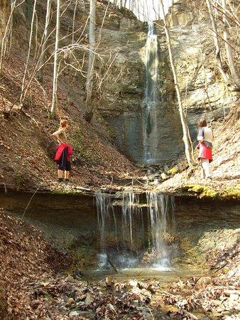 Treznea Waterfall: Treznea 2