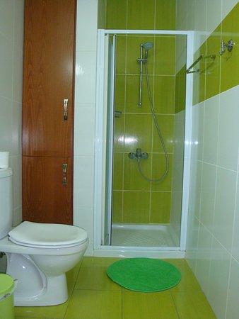 The modern spacious bathroom (toilet, washbasin, shower). Shampoo, soap liquid and fresh towels are provided.