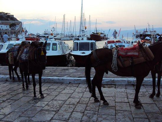 Hydra Town, Kreikka: ΥΔΡΑ