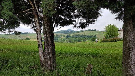 Azienda Agricola I Monticelli