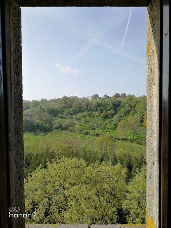 Castel Cellesi照片