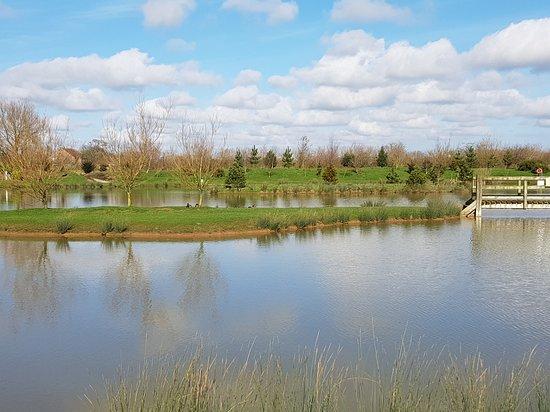 Landscape - Picture of Sycamore Farm Park, Burgh le Marsh - Tripadvisor