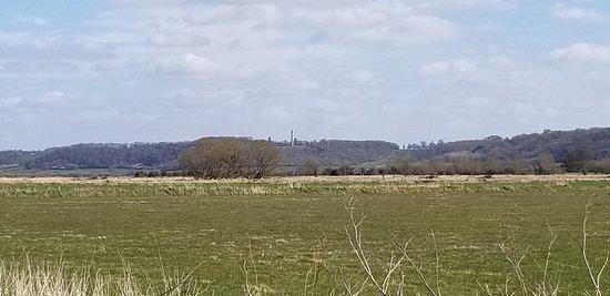 Somerset Levels and Moors Wetland