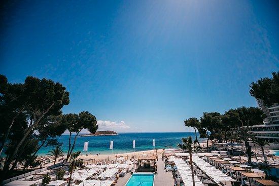 Nikki Beach Mallorca: View on the Magaluf Beach